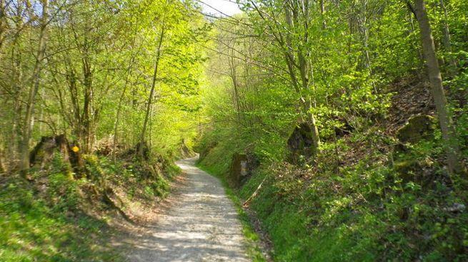 Planetenweg Burgdorf